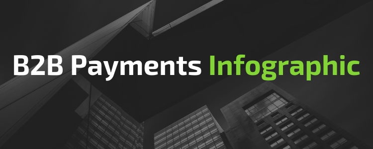B2B Payment Infographic
