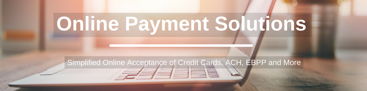 Dedicated LP - Online_Payments.png